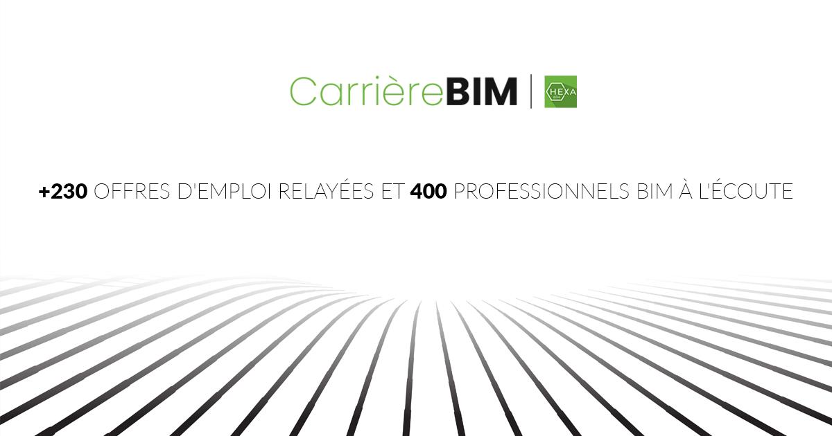 CareerBIM-the-balance sheet