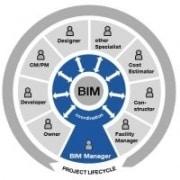 BIM managers