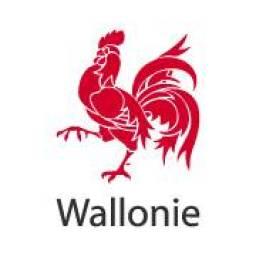 Wallonie_hexaBIM.jpg